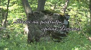 Stećci na području općine Živinice I