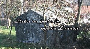 Stećci na području općine Živinice II