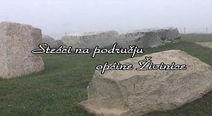Stećci na području općine Živinice III